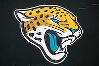 Jaguars Mini Camp 041613