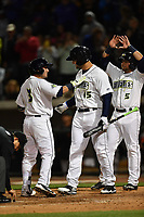 Shortstop Michael Paez (3) of the Columbia Fireflies, left, is congratulated by Tim Tebow (15) and Blake Tiberi (5) after hitting a home run in a game against the Augusta GreenJackets on Opening Day, Thursday, April 6, 2017, at Spirit Communications Park in Columbia, South Carolina. Columbia won, 14-7. (Tom Priddy/Four Seam Images)