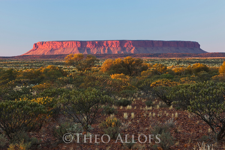 Australia, Northern Territory, Mount Connor at sunrise