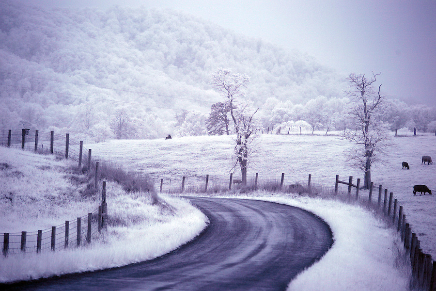 Greene County, Virginia photographed in infrared. Photo/Andrew Shurtleff