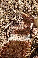 A Cold Path
