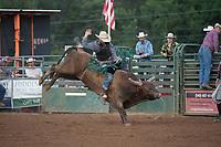 SEBRA - Gordonsville, VA - 7.8.2017 - Bulls & Action