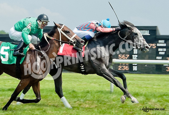 Farce winning at Delaware Park on 6/27/13