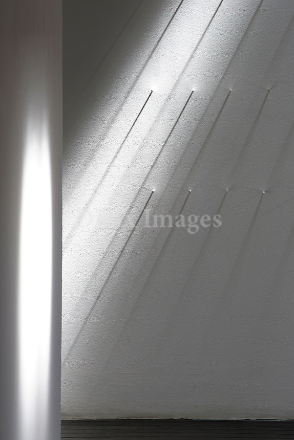 Wooden pegs on white wall