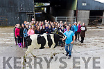 4th yr transition students from Abbeydorney Secondary school pictured with their adopted Friesian cow ' Sarah ' with farmer Pat Buckley, as part of their agricultural science class.