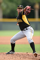 Pittsburgh Pirates pitcher Delvin Hiciano (91) during minor league spring training on March 23, 2015 at Pirate City in Bradenton, Florida.  (Mike Janes/Four Seam Images)