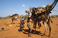 Nomads loading camels
