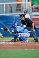 Burlington Royals catcher Chase Livingston (29) catches a pitch as home plate umpire Zach Neff looks on during the game against the Danville Braves at American Legion Post 325 Field on August 16, 2016 in Danville, Virginia.  The game was suspended due to a power outage with the Royals leading the Braves 4-1.  (Brian Westerholt/Four Seam Images)