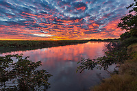 'Okavango River Glory!'<br />