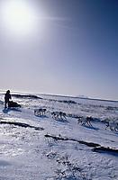 K.Anderson on Trail into Shaktoolik on Norton Sound<br /> Bering Sea &amp; Besboro Island