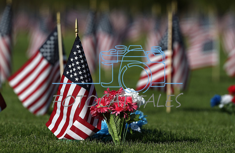 Flags fly in the veterans section of the Lone Mountain Cemetery in Carson City, Nev., on Sunday, May 25, 2014, in preparation for Monday's Memorial Day ceremony.<br /> Photo by Cathleen Allison