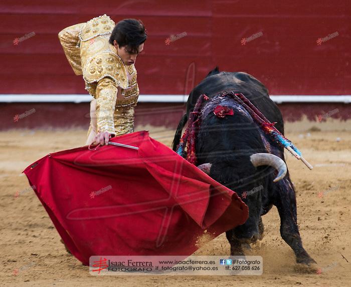 Feria de Fallas 2017.<br /> Novillada con Picadores.<br /> Cristian Climent - Andy Younes - Marcos.<br /> Novillos de Jose Vazquez.<br /> Valencia, Valencia (Spain).<br /> 14 de marzo de 2017.