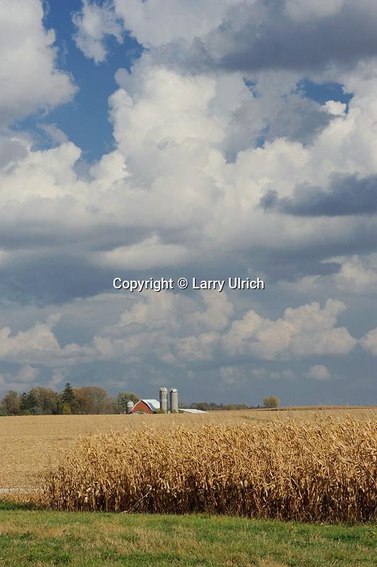 Farm along Highway 7<br />   near Pickwick<br /> Winona County<br /> Minnesota