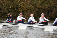 Crew: 215   W U23 8+ U20   Henley Rowing Club   HEN-JONSSON-2<br /> <br /> Wallingford Head 2017<br /> <br /> To purchase this photo, or to see pricing information for Prints and Downloads, click the blue 'Add to Cart' button at the top-right of the page.