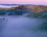 Loess Hills, Sylvan Runkel State Preserve, Iowa