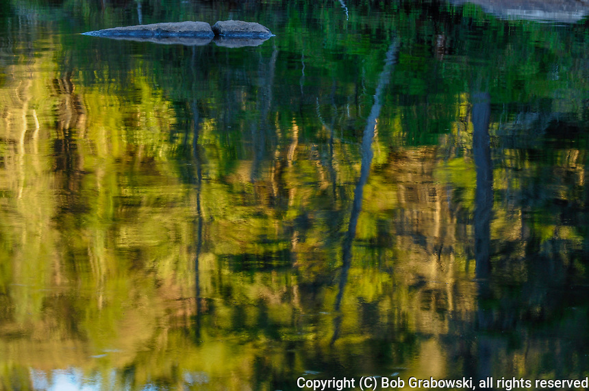 Reflections on Cedar Lake in the evening in the West Canada Lakes Wilderness Area in the Adirondack Forest preserve in New York State
