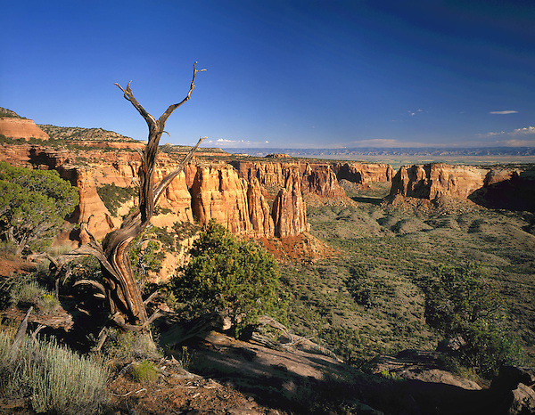 Colorado National Monument, Grand Junction, Colorado, USA. John leads private photo tours throughout Colorado, year-round.