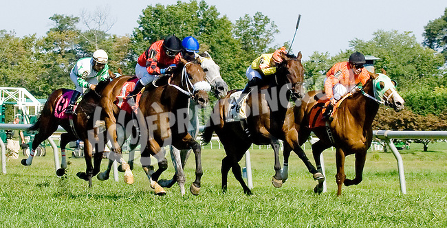 My Luca winning at Delaware Park on 9/12/12
