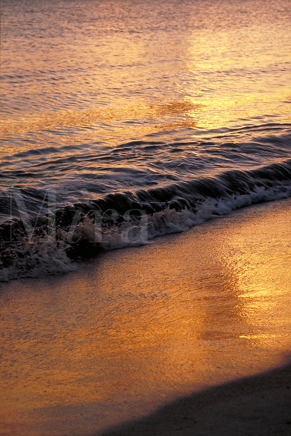 sunrise wave on beach with golden light. St Thomas, US Virgin Islands Caribbean.