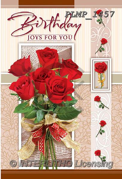 Marek, VALENTINE, VALENTIN, photos+++++,PLMP1457,#v#, EVERYDAY ,roses