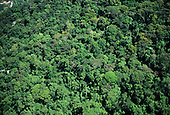 Rio de Janeiro, Brazil. Aerial view of unbroken forests of Barra da Tijuca.