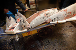 Tokyo, 1st of March 2010 - Tuna at Tsukiji wholesale fish market, biggest fish market in the world. 6:15 a.m, a frozen tuna is cut in small pieces after the auctions.