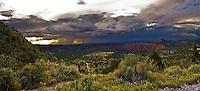 *Moab and Castle Valleys, Utah