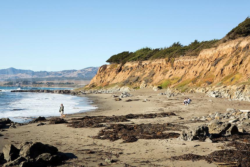 Beach Cambria Pines, California