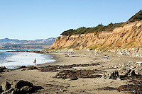 Beach Cambria Pines, California