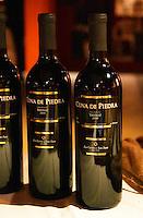 Cuna de Piedra Oak Reserve Tannat 2000 Los Cerros de San Juan. Montevideo, Uruguay, South America Uruguay wine production institute Instituto Nacional de Vitivinicultura INAVI