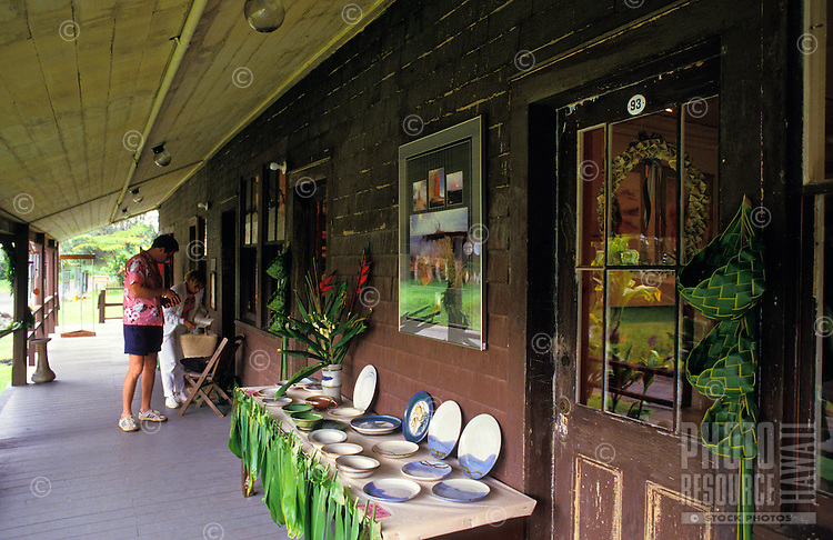 Visitors to the Volcanoes National park stand near displays along the exterior of the Volcano Art Center