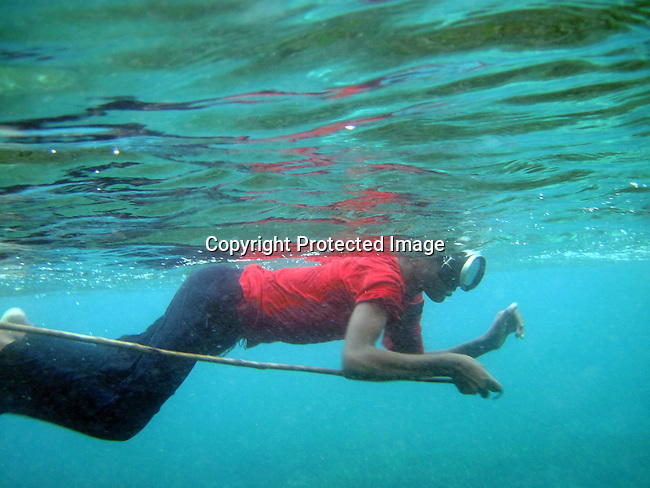 PEMBA, TANZANIA - DECEMBER 7 : Hatibou, age 14, swims with a spear looking for octopus on December 7, 2010 on Pemba, Tanzania. He works as a fisherman. He doesn't go to school but lives with his parents and siblings in the small village of Tumbe. (Photo by: Per-Anders Pettersson