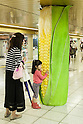 A little girl touches a column displaying a giant corn in the Tokyo Metro passageway in Shinjuku on September 1, 2015, Tokyo, Japan. The Central Union of Agricultural Co-operatives (JA-ZENCHU) is promoting Japanese vegetables with the vegetable columns and a massive 80 meter ''Wall Farmer's Market'' information poster until September 6th. (Photo by Rodrigo Reyes Marin/AFLO)