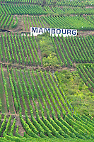 vineyard white sign mambourg grand cru sigolsheim alsace france