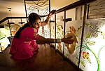 18/11/09_Domestics in India