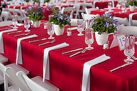 Event - Goodwill Party DECOR