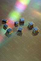 Computer semiconductor chips on a silicon wafer.