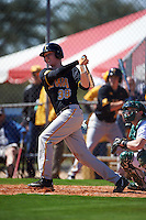 Iowa Hawkeyes first baseman Tyler Peyton (38) at bat during a game against the Dartmouth Big Green on February 27, 2016 at South Charlotte Regional Park in Punta Gorda, Florida.  Iowa defeated Dartmouth 4-1.  (Mike Janes/Four Seam Images)