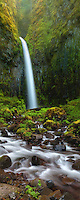 Waterfall and cascades through the lush foliage of Oregon's Columbia Gorge.