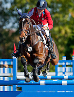 Inmidair, with rider Jan Byyny  (USA), competes during the Stadium Jumping test during the Fair Hill International at Fair Hill Natural Resources Area in Fair Hill, Maryland on October 21, 2012.