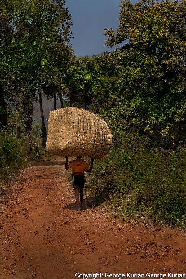 A man carries a bamboo granary he has made back to his village in the hope that he will be allowed to grow something in the land he has cleared.