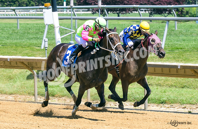 Itasca Falls winning at Delaware Park on 7/3/17