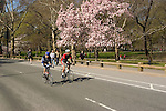 New York City, New York: Spring time with blossoms in Central Park  .Photo #: ny265-14723  .Photo copyright Lee Foster, www.fostertravel.com, lee@fostertravel.com, 510-549-2202.