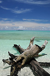Palau, Micronesia -- Tranquil beach on a deserted tropical island.