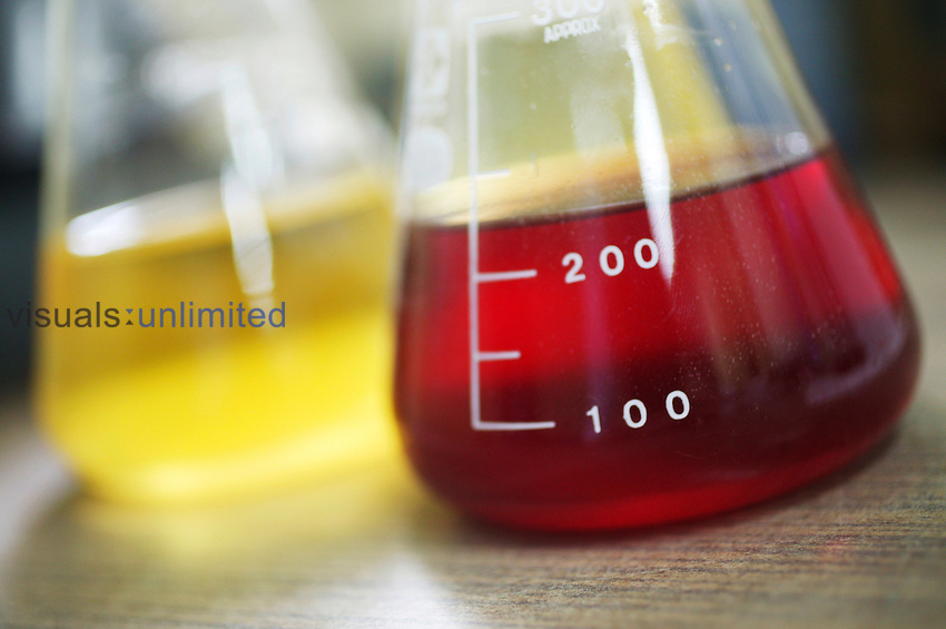 Two Erlenmeyer flask containing unknown yellow and red liquid Royalty Free