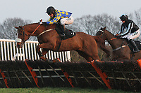 Celtic Charlie ridden by Colin Bolger jumps during the Hepworth Conqueror Stout At Plumpton Racecourse Handicap Hurdle