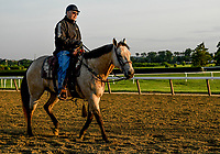 ELMONT, NY - JUNE 08: D. Wayne Lukas watches his horses work out as horses prepare on Friday for the 150th running of the Belmont Stakes at Belmont Park on June 8, 2018 in Elmont, New York. (Photo by Eric Patterson/Eclipse Sportswire/Getty Images)