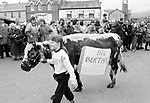 Big Bertha is led through Sneem Village at the head of the annual St. Patrick's Day Parade in 1993. The following year Bertha again led the parade but this time she was stuffed after dying on New Years Eve.<br /> Picture by Don MacMonagle