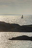 Segelbåt i siluett på fjärd med solreflexer vid Stora Nassa i Stockholms ytterskärgård.