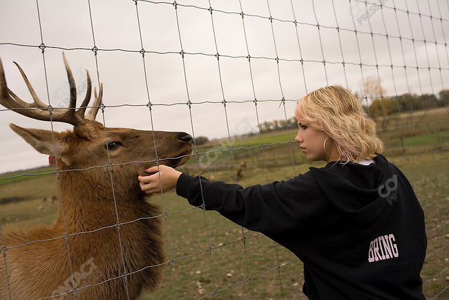 Richard Bring's daughter Jadelyne, 15 years old, on her family farm with the elk that she bottle raised. Galesburg, North Dakota, October 7, 2007.